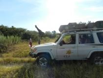 Autovlajky na Safari v Afrike