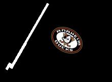 Anaheim Ducks športová autovlajka