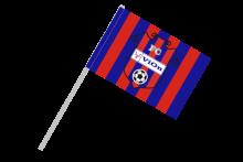 FC Vion Zlaté Moravce športová vlajka s plastovou tyčkou