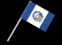 Liberec športová vlajka s plastovou tyčou