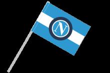Neapol športová vlajka s plastovou tyčou