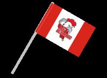 Olomouc športová vlajka s plastovou tyčou