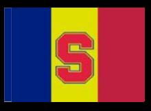 Sparta Praha športová vlajka s tunelom